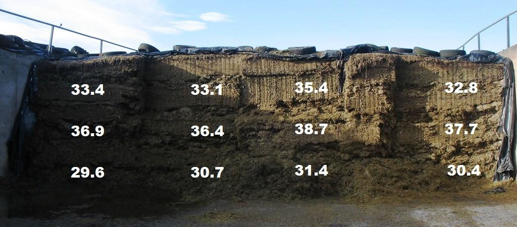 Forage analysis forage variability